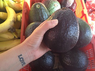 Look at the size of the avocados they have here | by The Mitzikin Revolution