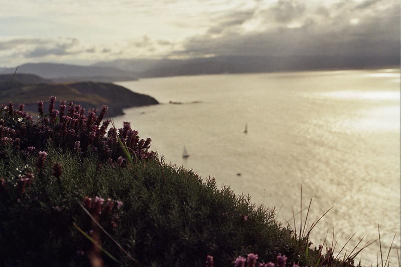 Pinceladas hechas de vegetación, de brezos, de veleros e ilusión