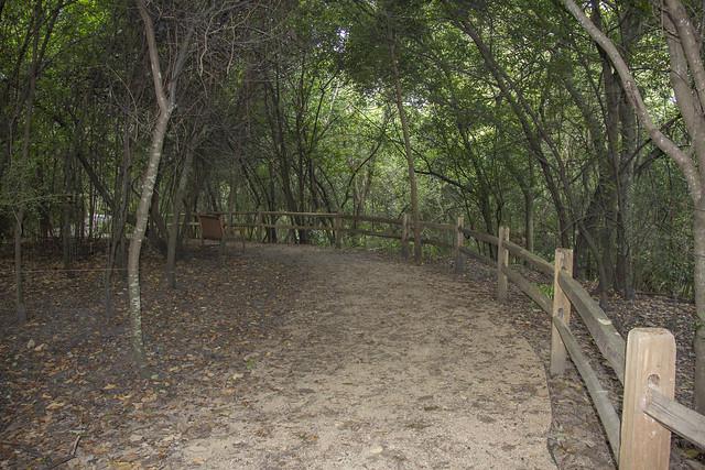 Houston Arboretum and Nature Center_14