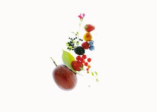 fruits | by studio mixture