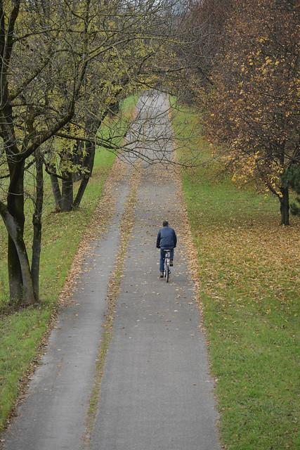 late fall , München   (in explore 15/11/14)