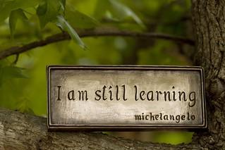 learning | by Anne Davis 773