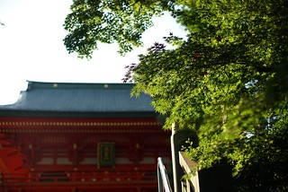 Daylight@Waseda_Anahachiman_Tokyo