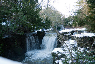 Winter 2013 (Jesmond Dene)  (14) | by Howard.