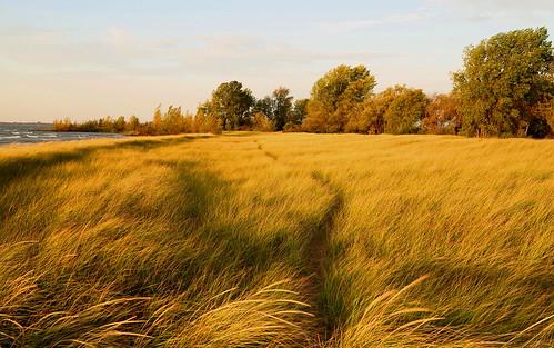 autumn up october michigan lakemichigan upperpeninsula deltacounty escanaba lakemichiganshoreline aronsonisland upautumn canong1x escanabaautumn escanabashoreline