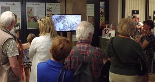 Scherm toont life-webcambeelden uit de nestkast