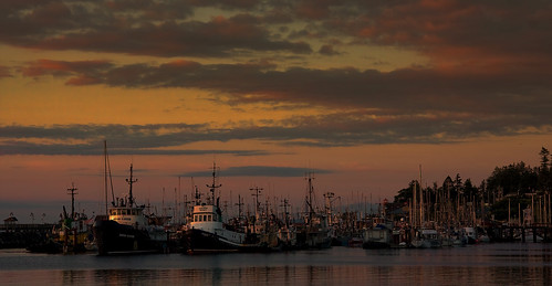 earlymorning campbellriver billanderson fishingtrawlers discoverypassage canon40d governmentmarina