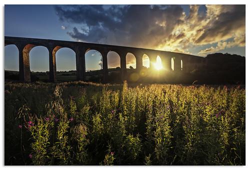 hewenden yorkshire d600 ngc nikonfxshowcase nikkor1635mmf4 sunset sky flowers viaduct