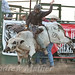 Johnson County Pro Bull Riding 2012