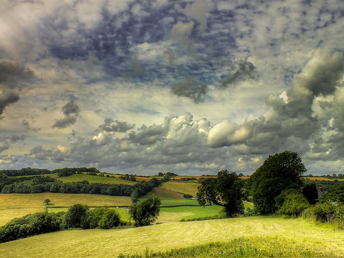 trees sky color green nature landscape perspectives gloucestershire array wyevalley mfcc colorphotoaward ericgoncalves