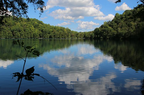 clouds sky white fluffy blue smooth reflection trees green forest water fall park landmark