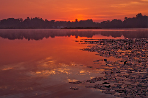 morning summer color silhouette clouds sunrise reflections northreading martinspond