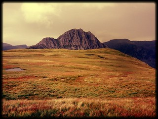 Tryfan across the bog | by :: Wendy ::