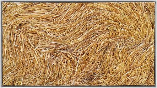 Mulinbianco, haystacks detail | by Monica Arellano-Ongpin