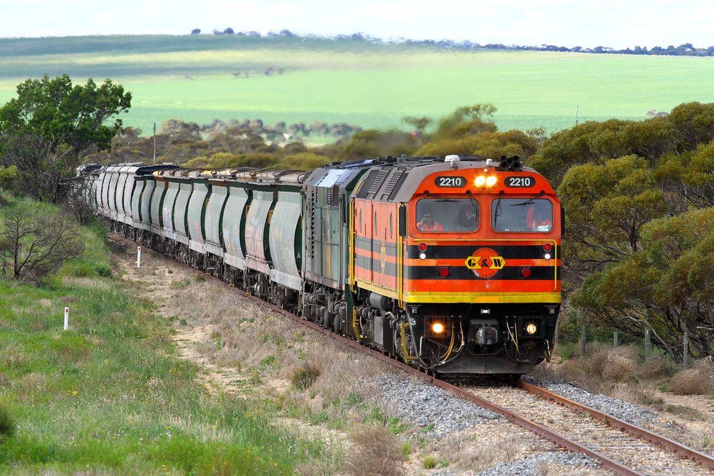 2210 701 3142s Loaded Allawoona Grain between Wynarka and Tailem Bend 12 08 2012 by Daven Walters