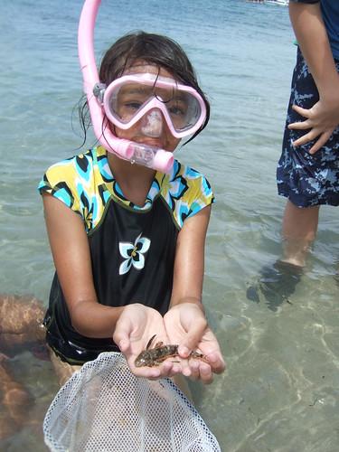Armida finds a sea robin.