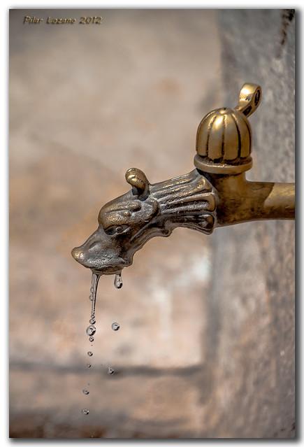 Sed de agua ...
