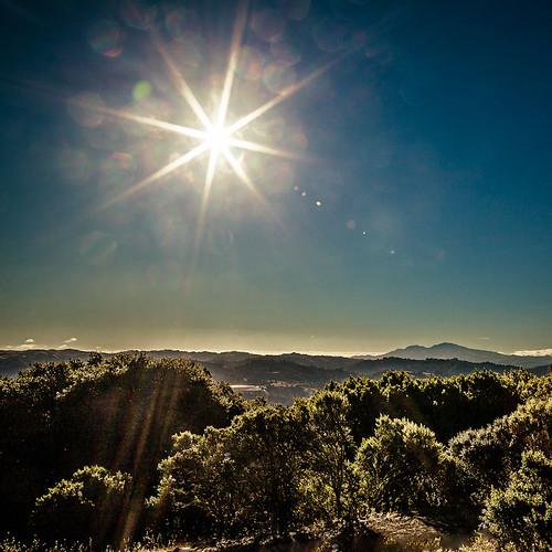 sunflare inspirationpointberkeleycalifornia