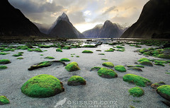 Milford-Sound-Mitre-Peak-New-Zealand