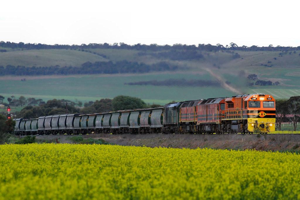 GWA004 ALF20 2210 701 3142s Loaded Allawoona Grain Callington 12 08 2012 by Daven Walters