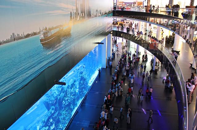 Dubai Aquarium in the Dubai Mall.