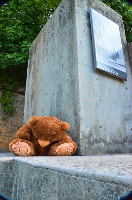 Lost Teddy 2