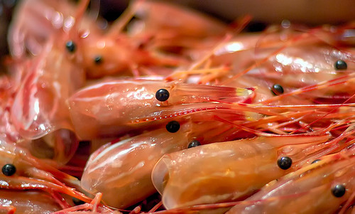 shrimp-heads-dau-tom | by Phú Thịnh Co