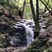 Uvas Canyon County Park
