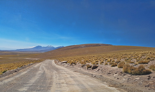 Road to Lagunas Miscanti y Miñiques   by Luís Biggi