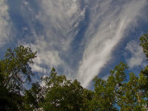 sky clouds canon florida powershot polarizer sx40 canonsx40