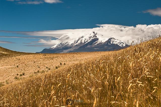 Cayambe & Andes Páramo