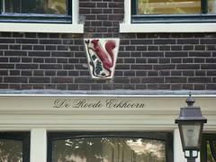 Amsterdam - gevelsteen De Roode Eekhoorn - Geldersekade 59