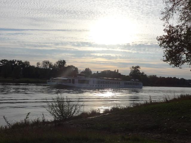 2014/15 Flußkreuzfahrgastschiff Viking Beyla von Neptun-Werft in Rostock Bau-Nr. 559 bei Reederei Viking River Cruises Bergfahrt Elbe-km 323 in 39104 Magdeburg