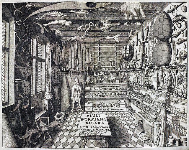 Wunderkammer 驚異の部屋