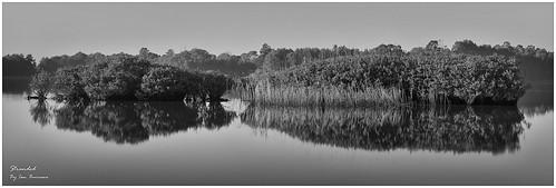 panorama lake seascape water liverpool sunrise canon landscape scenery stitch pano sydney scenic australia panoramic nsw stitching mangroves stitched 1022mm giga nex westernsydney westernsuburbs autopano chippingnorton 1755mmf28 5n 70200mmf40 autopanogiga metabones nex7 nex5n sonynex7 sonynex5n smartadapter