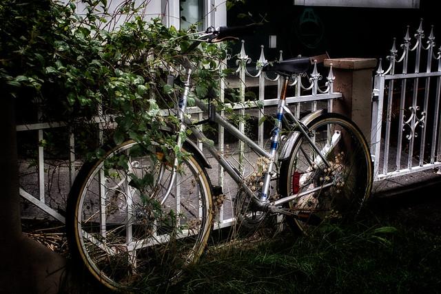Ingrown bike