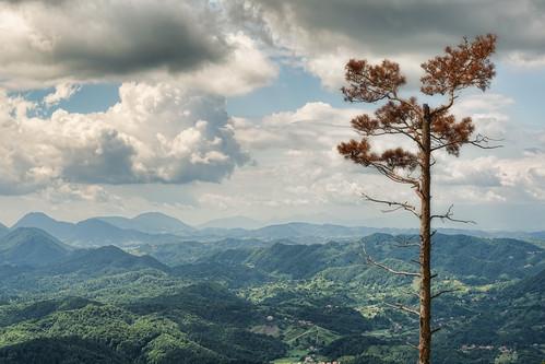 sky mountain tree clouds alpes landscape high view croatia gora gorski kotar ravna