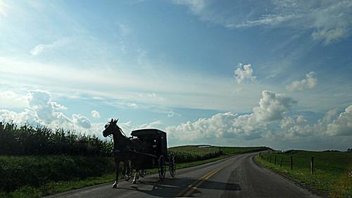 shadow ohio horse usa clouds corn carriage sunday wide peaceful amish explore hay countryroad horsepower horseandbuggy longshadow farmcountry sundayevening flickrexplore berlinohio berlinoh rcvernors eveningshadow rickchilders clopclopclop afinesundayeveninginohio