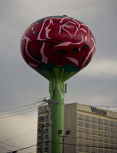 Road Trip 2012--Rose Water Tower | by Jennifer Kirkland