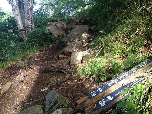 白山 平瀬道 登山口から2.0km地点   by ichitakabridge
