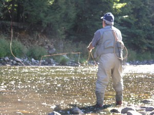 Wild Adirondack Trout Fishing | by papabearoutdoors