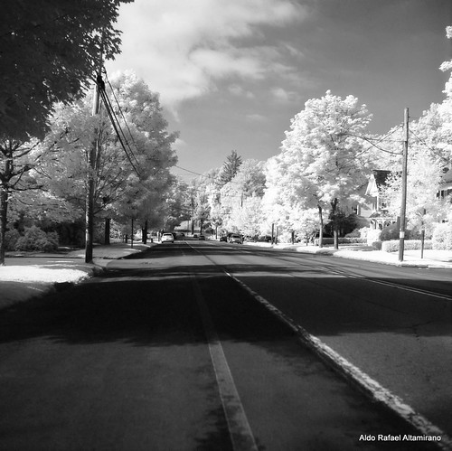 road summer blackandwhite bw 6x6 tlr film nature mediumformat square landscape ir mainstreet kodak pennsylvania hc110 pa filter infrared epson konica 2012 honesdale 80mm selfdeveloped yashicamatem kodakhc110 konicainfrared yashinon80mmf35 750nm konicainfrared750nm konica750nm bowerr72ir infrared750nm
