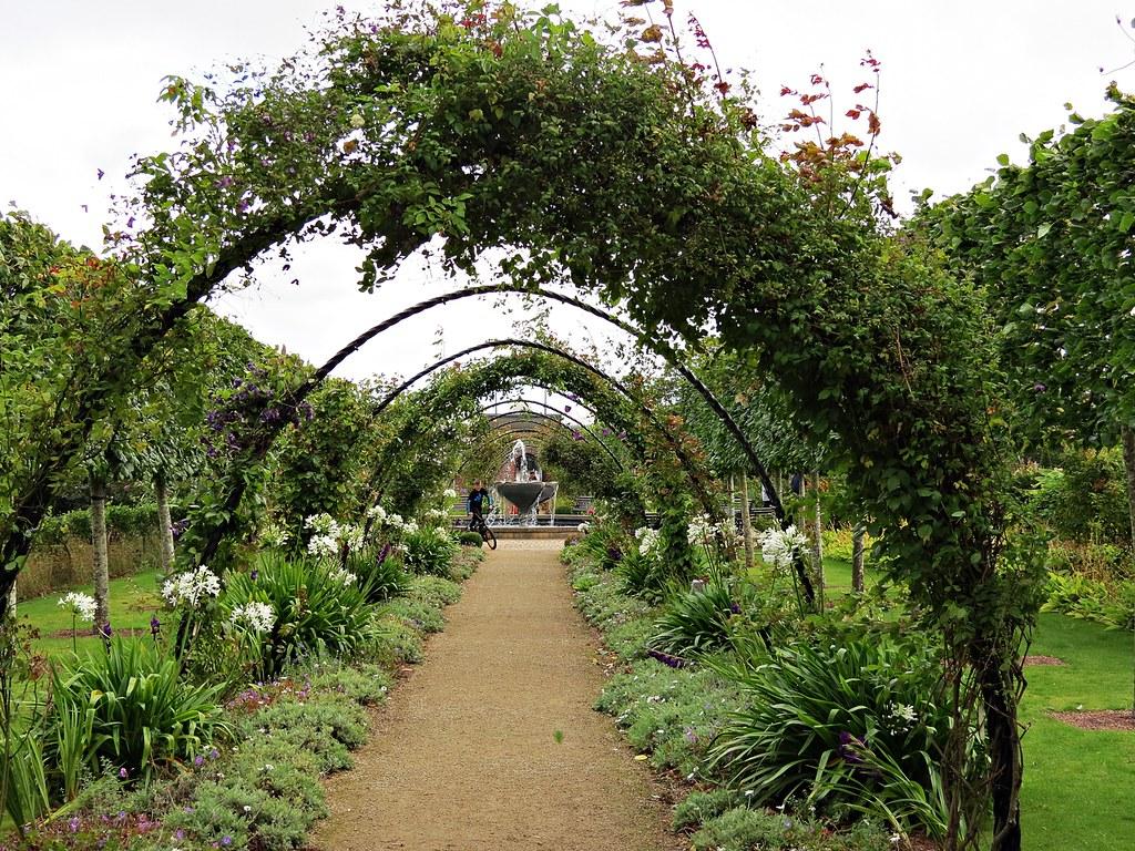 Bangor Castle Walled Garden, Co Down   Pathway through rose …   Flickr