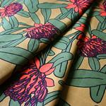 Veritas Designs Waratah Blooms