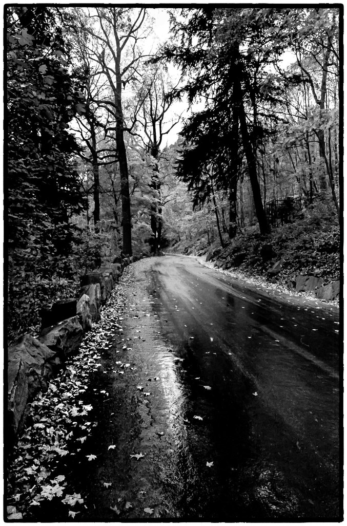 Rainy Day Road | Harriman State Pk  NYC | Arthur Gold | Flickr
