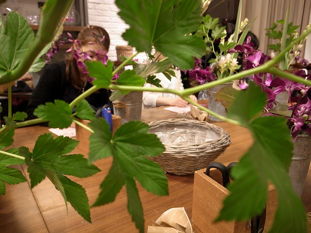 <p>f)キイチゴの葉 ベビーハンズ</p>
