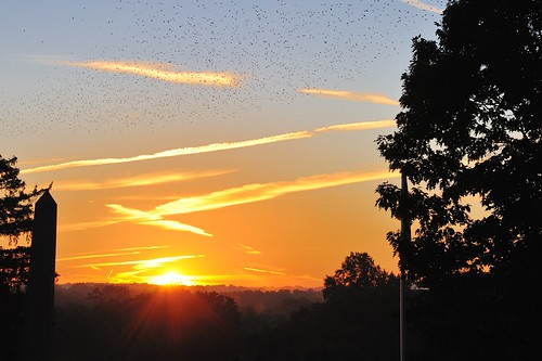 morning ohio sun cemetery birds sunrise geotagged dawn nikon raw nef nx2 canalfultonohio d3s starkcountyohio nikongp1 nikkor24120f4vr