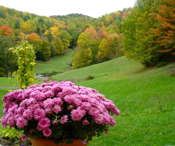 little-horse-creek-autumn