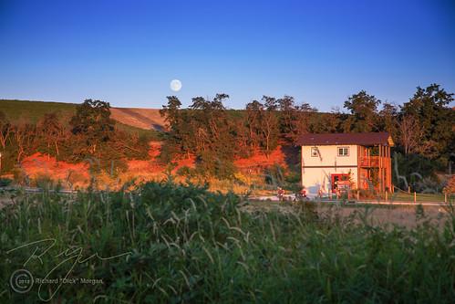 sunset moon vineyard moonrise