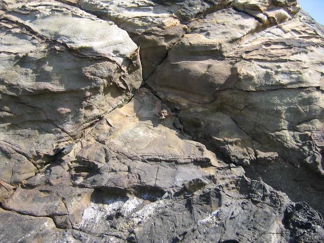 Tidepool rocks 2